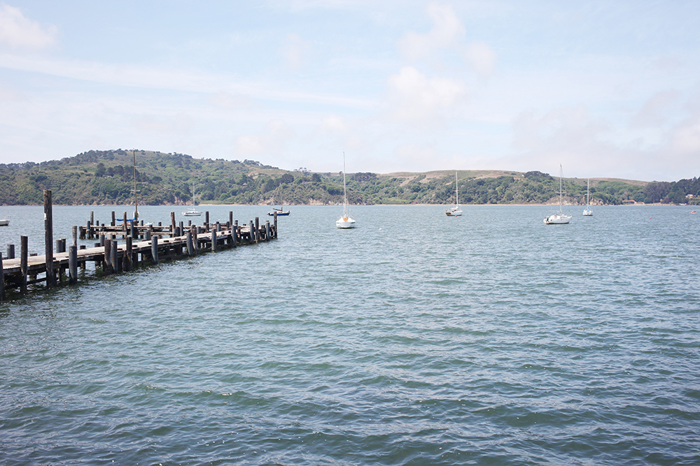 J for Jamie Blog | Tomales Bay Weekend