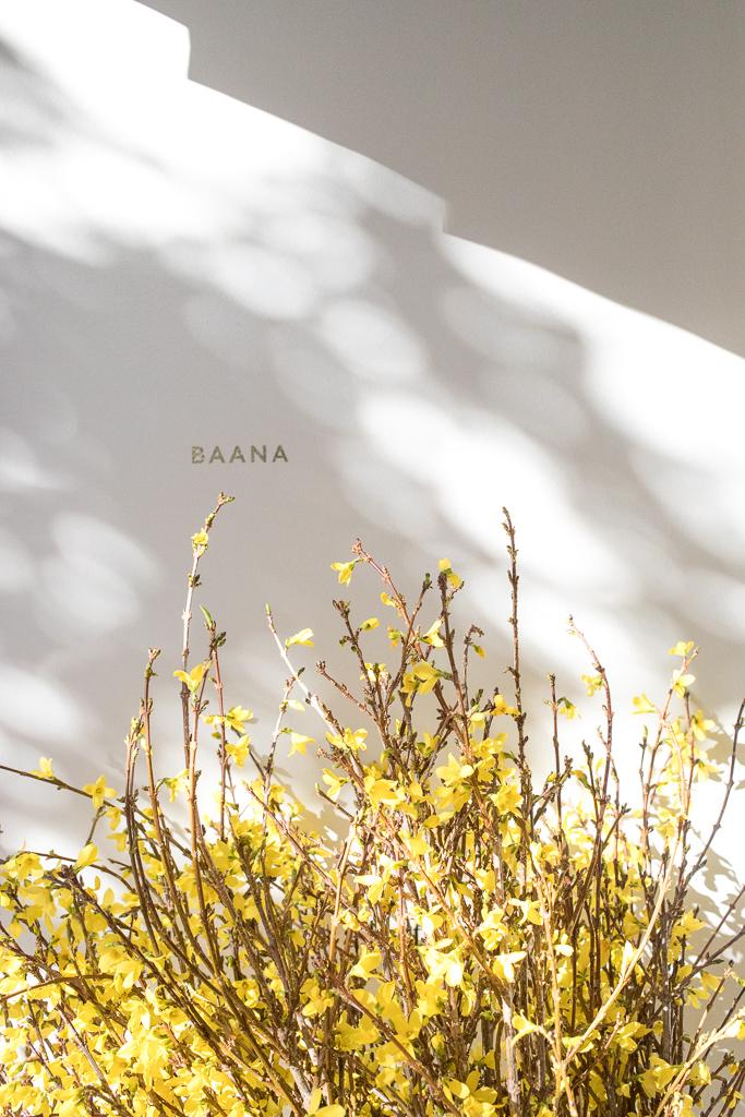 Baana San Francisco | J for Jamie Blog