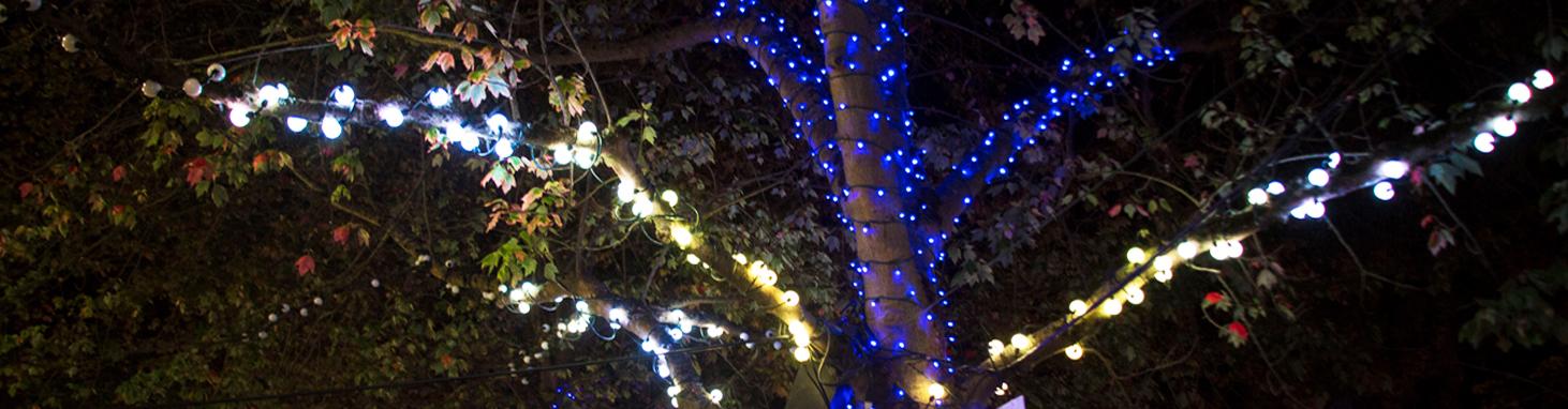Arborealis Light Fixture Types Creative Lighting Company Tree Holiday Seattle Dots.jpg