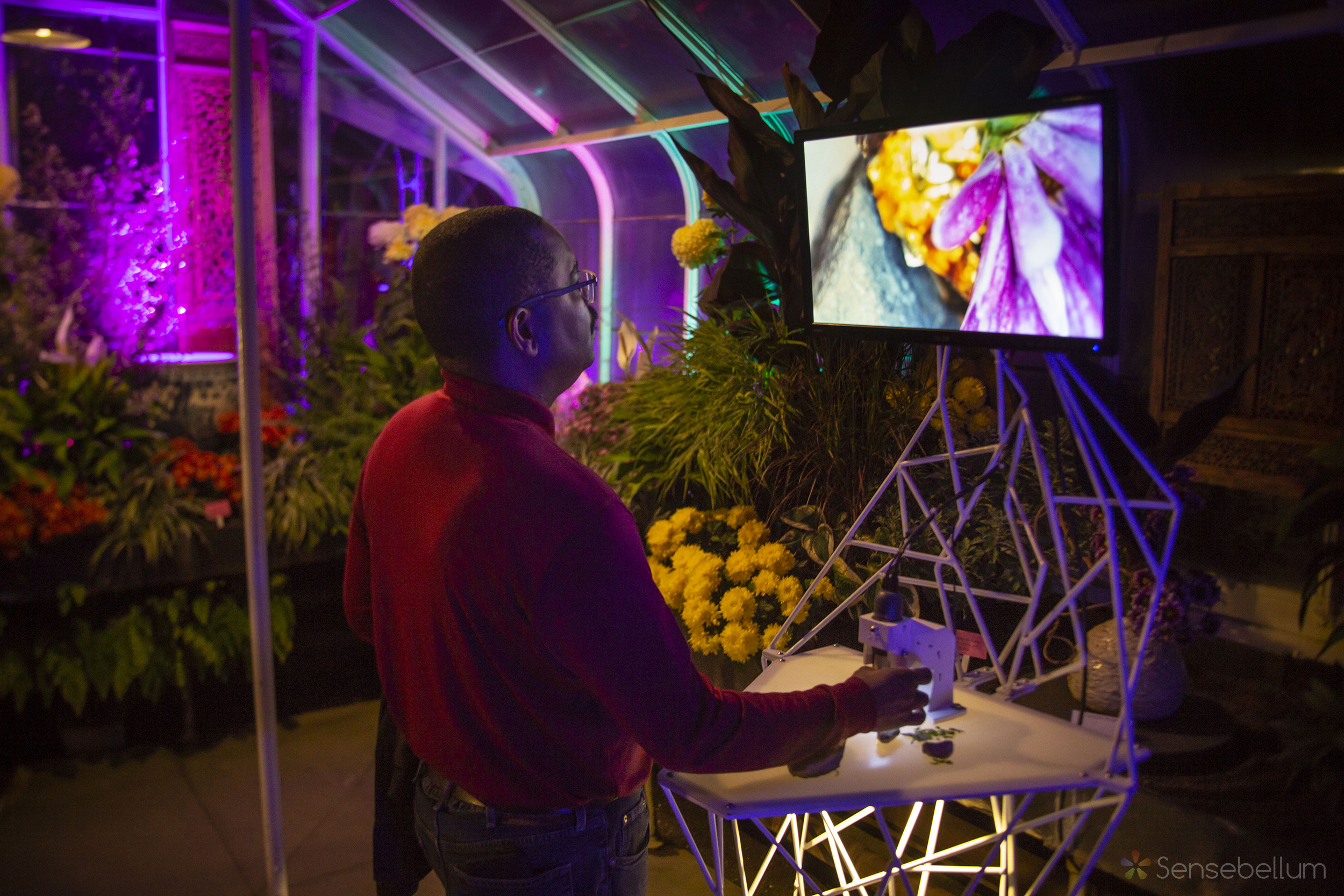 Sensebellum Lusio Lights Seattle Light Art Installation Event Lighting Rental Company Creative Washington 60 copy.jpg