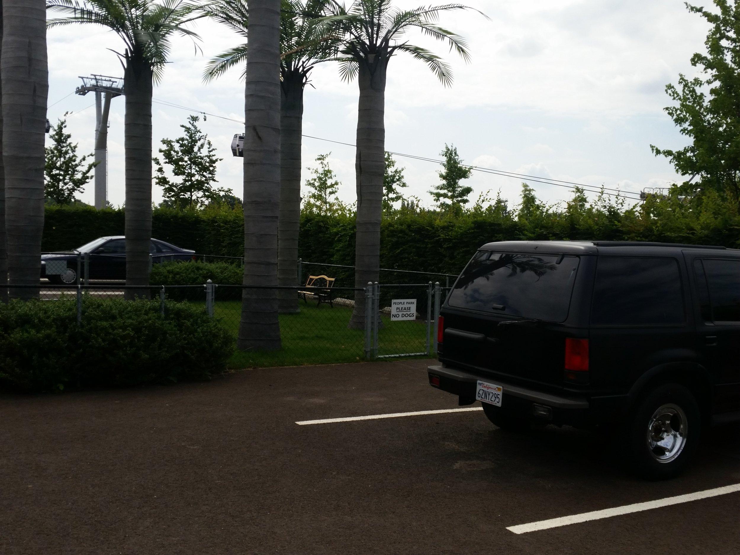"""3 Autos auf 200m²: """"Los Angeles Garden"""" gibt sich authentisch. Quelle: Sash"""