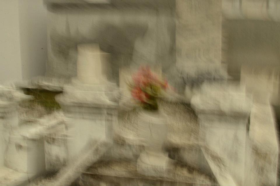 flowerwave.jpg
