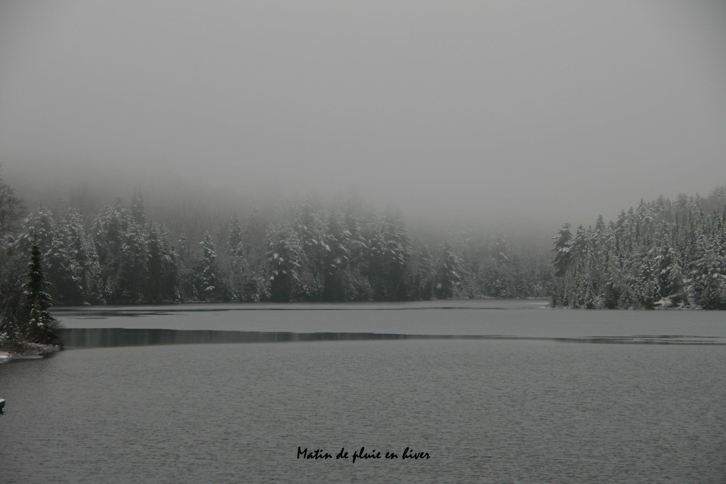 2010 Matin de pluie en hiver.JPG