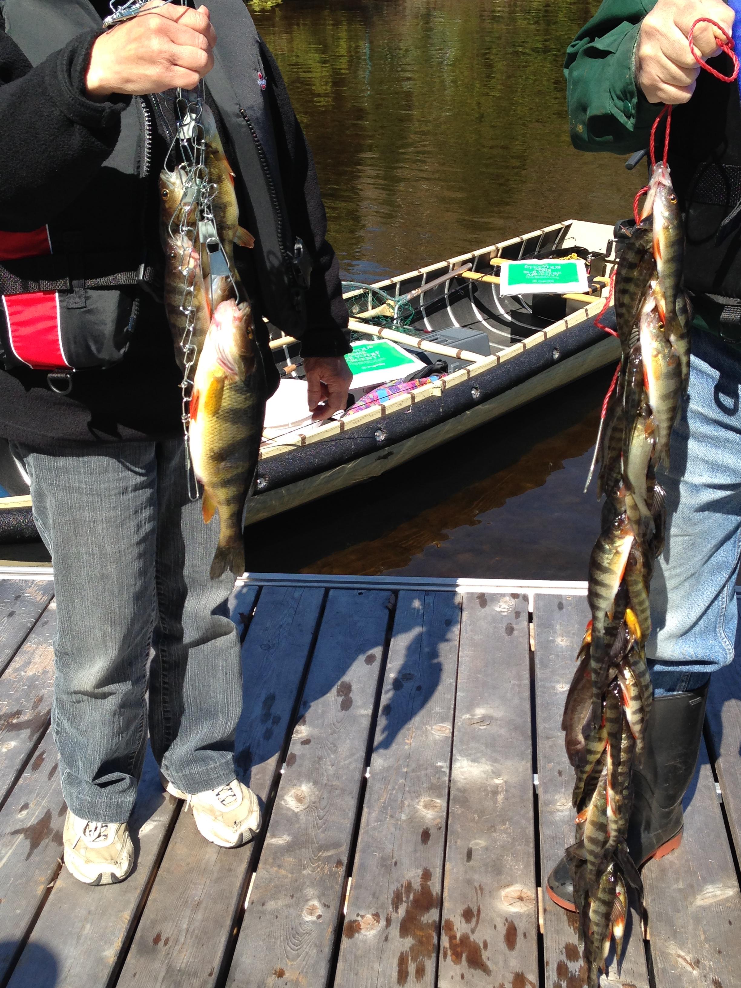 Le résultat de pêche de la famille Bonin!