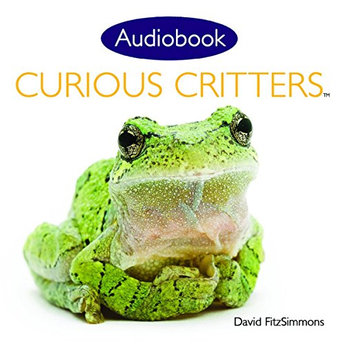 Curious Critters Volume One.jpg