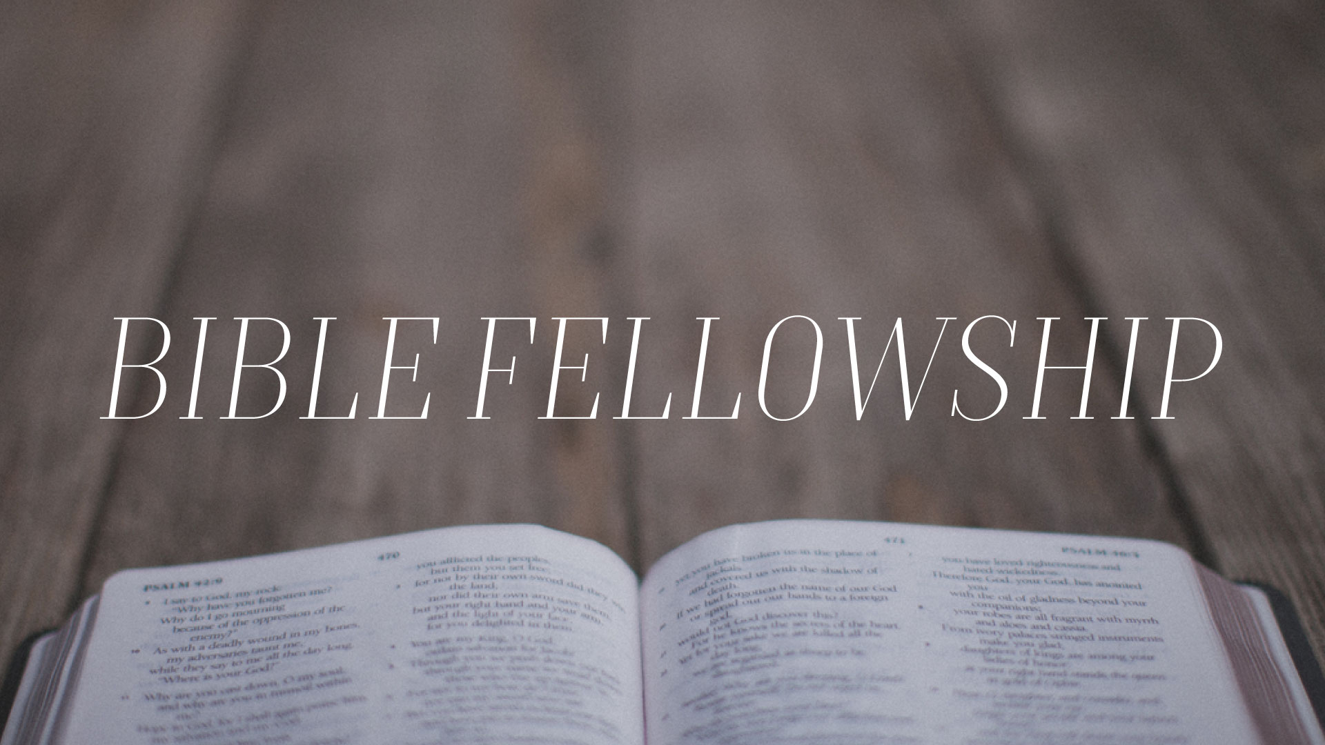 Bible-Fellowship.jpg