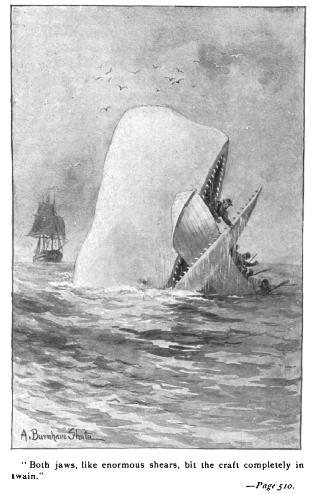 Illustration from an early edition of Moby Dick by Augustus Burnham Shute.