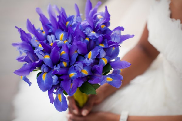 ambrose_black_wedding044.jpg