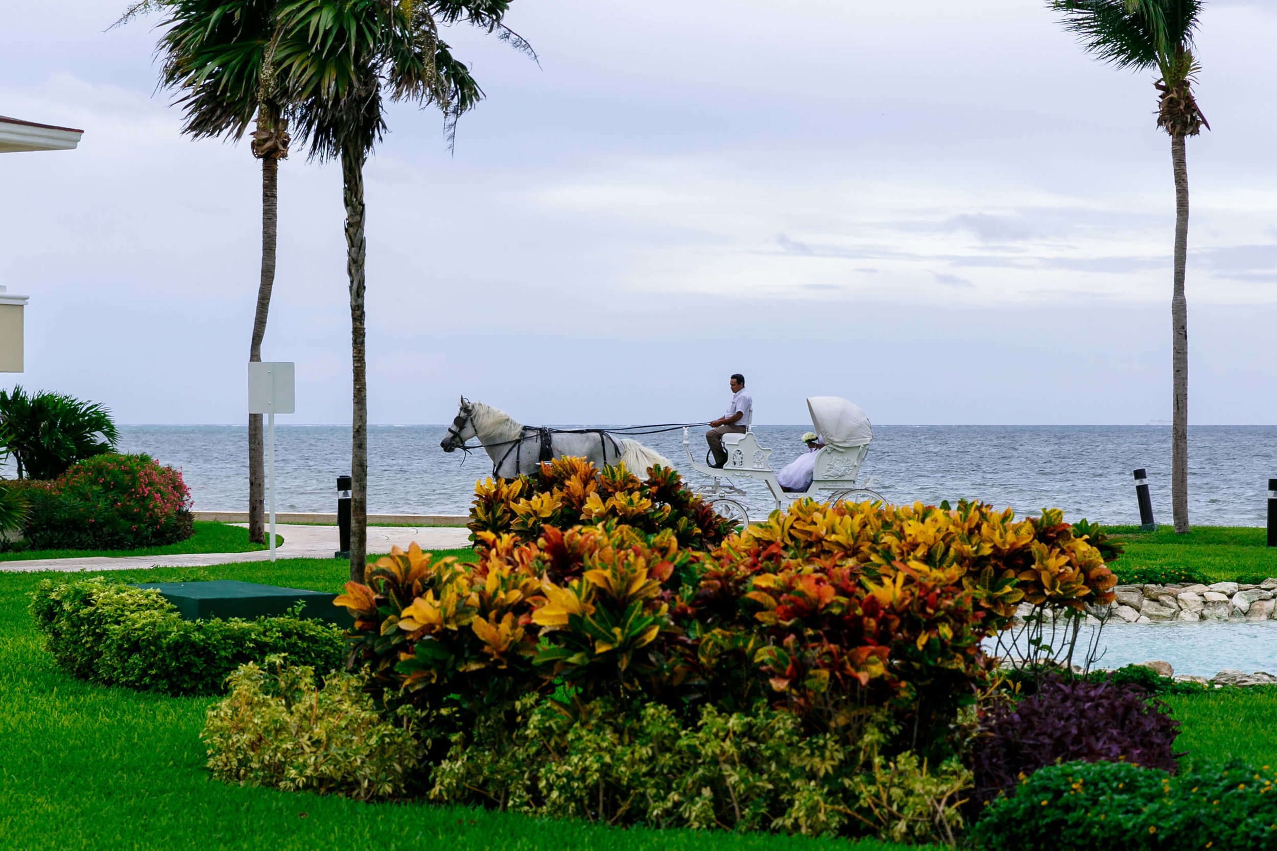 tressa-how-to-plan-a-destination-wedding-in-cancun-mexico-moon-palace-resort-black-destination-bride-destiland-desti-guide-to-destination-weddings-beach-wedding-horse-carriage-1.jpg