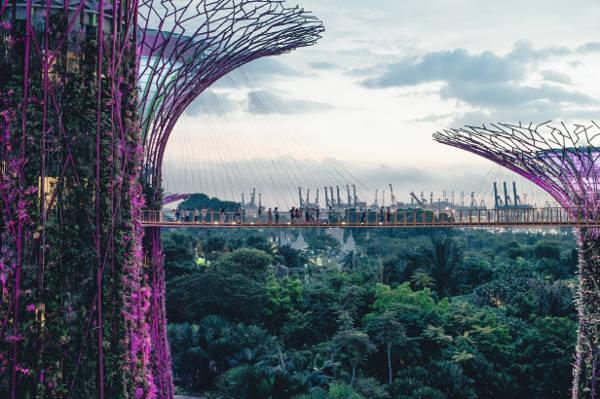 Singapore recent green gardens