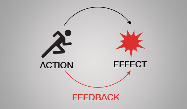 feedback-action-effect.jpg