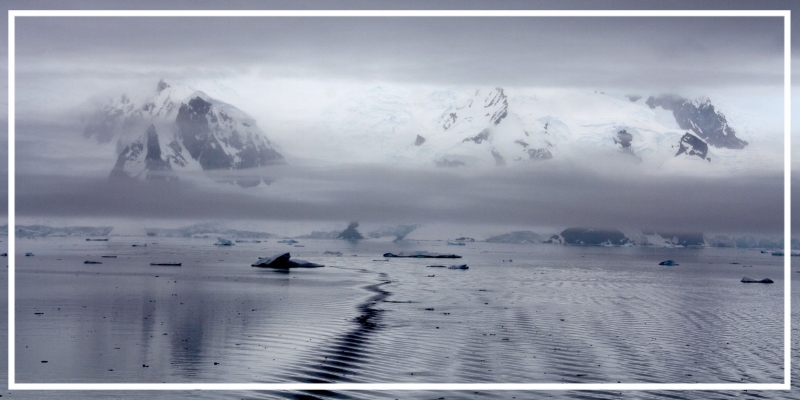 ice_floes_antarctica_water_polar_region_icy_glacier_cold_ice-982534.jpg!d.jpg