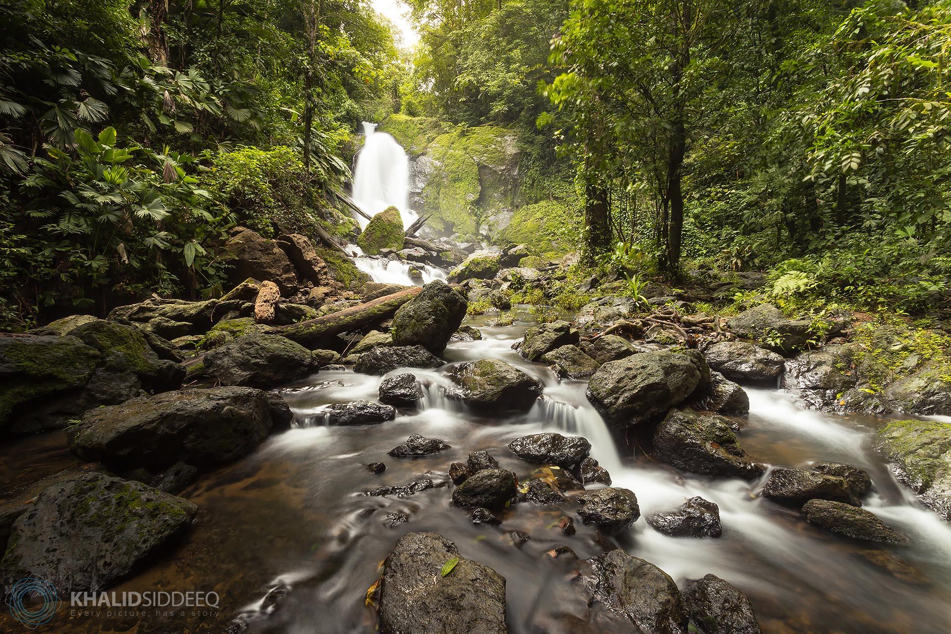 كوركوفادو، كوستاريكا