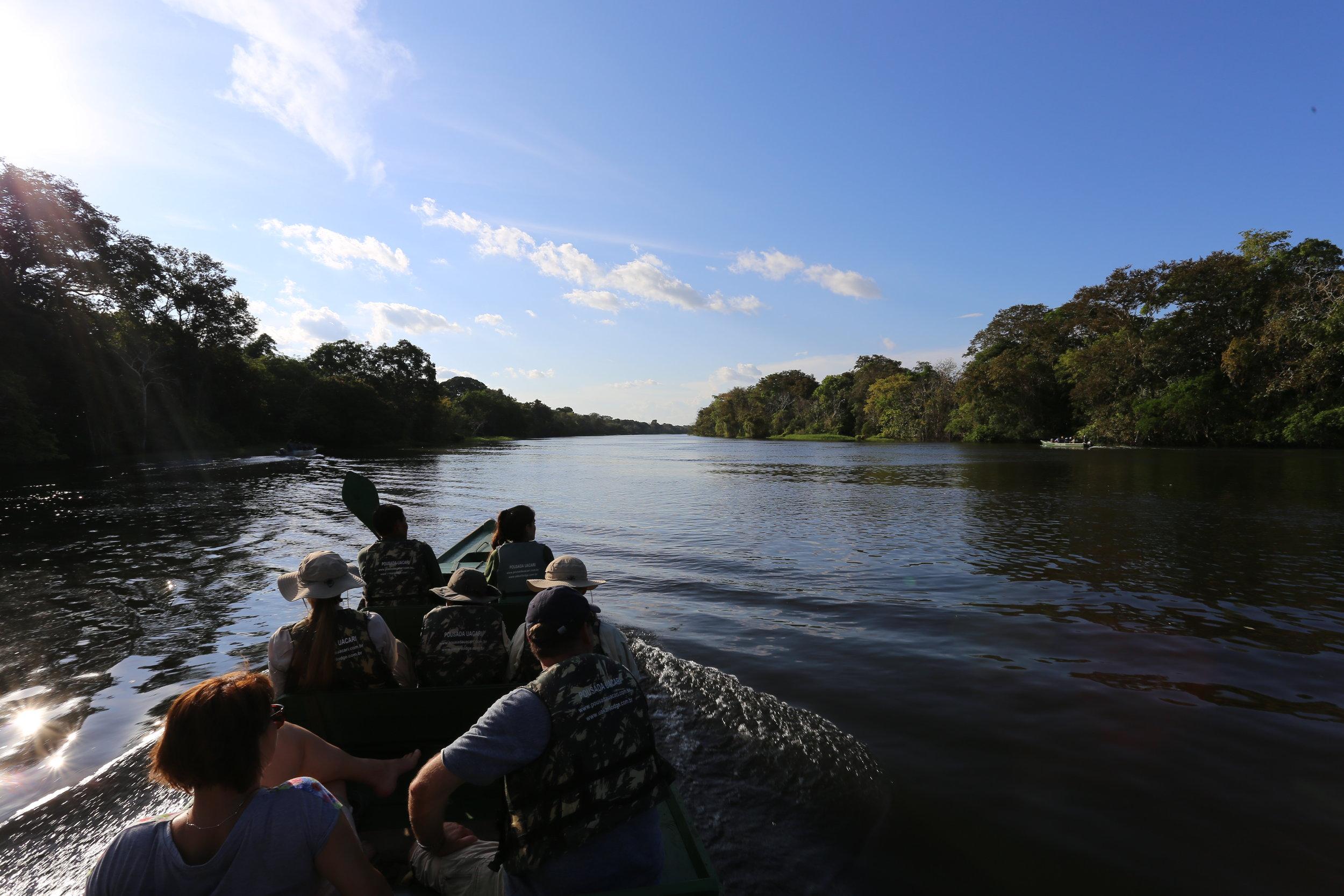 أول جولة قمت بها في غابات الأمازون