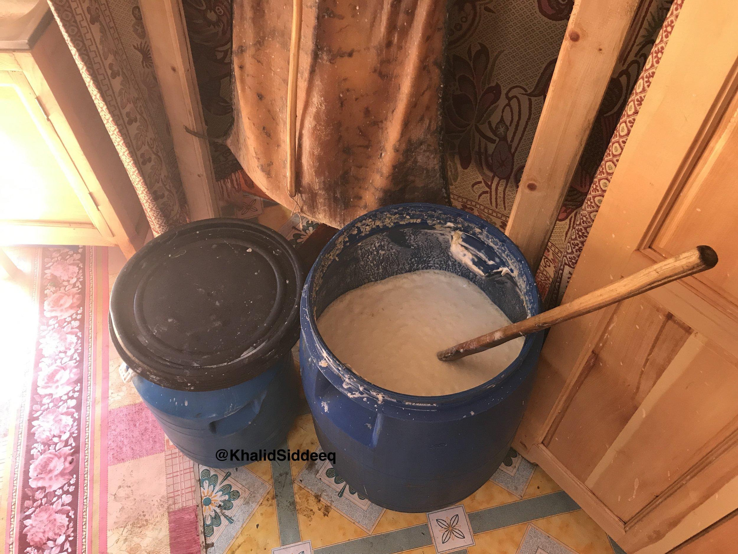 حليب الفرس بعد أن تم تخميره