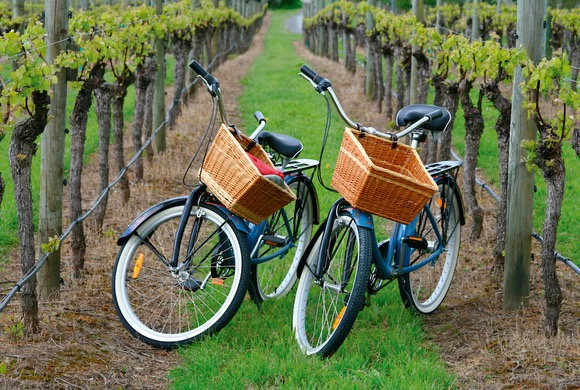 Tour_De_Vines_cycling_wine_Clare_valley_tour_1.jpg
