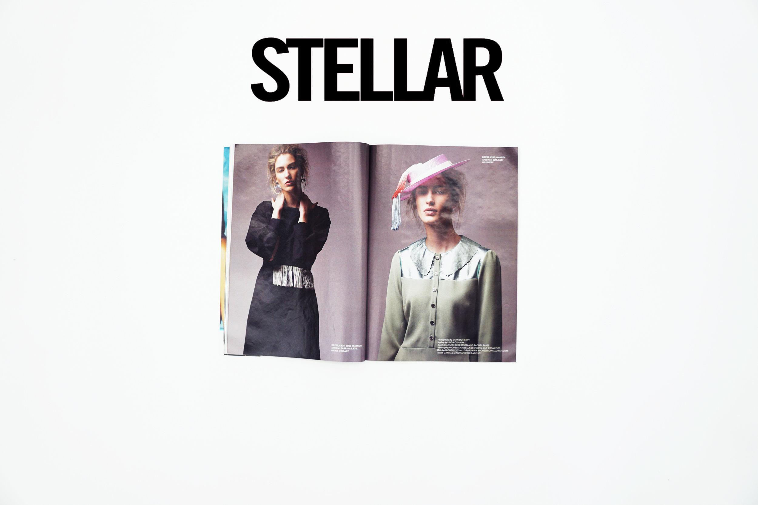 stellar 2.jpg