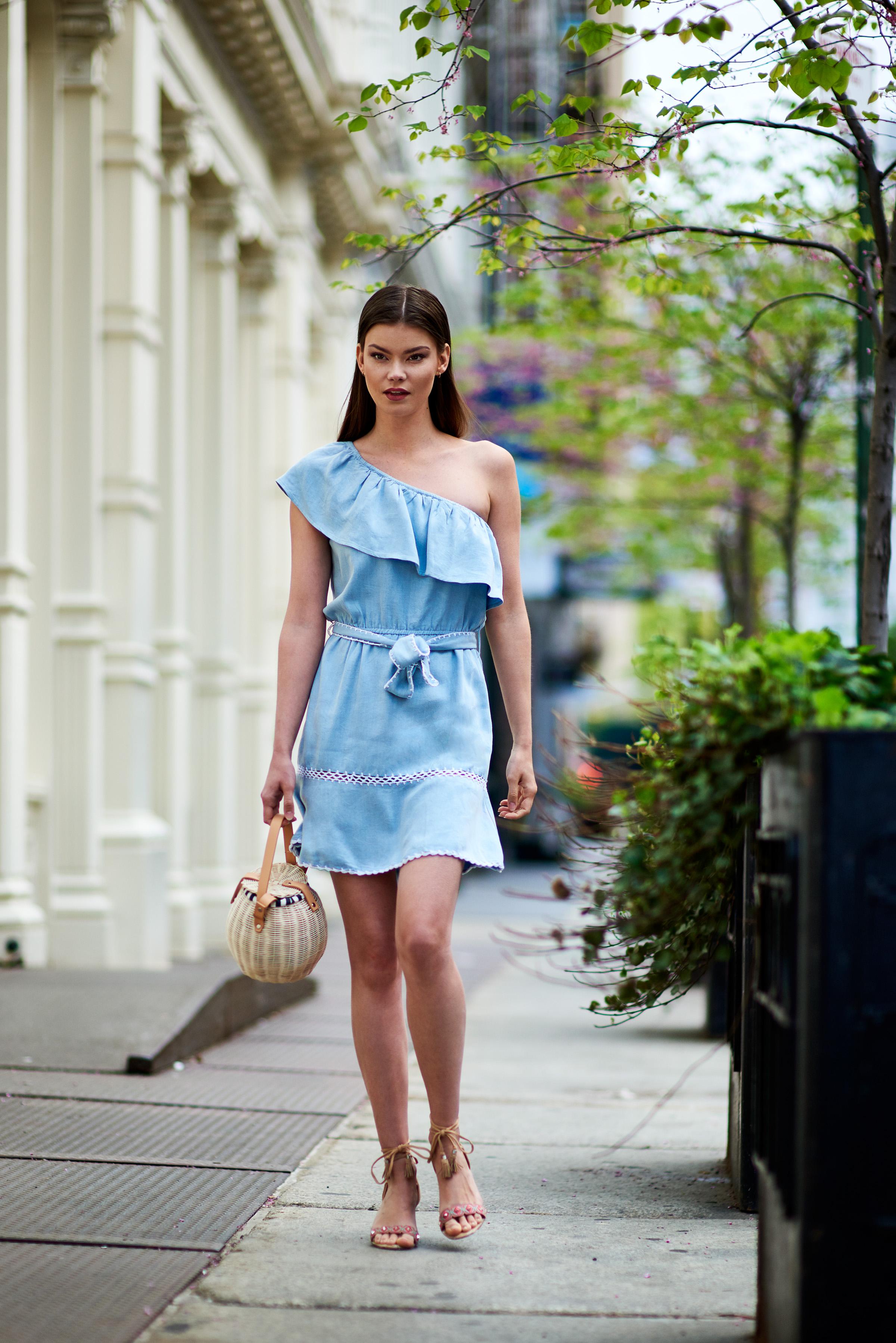 Haney One Shoulder Denim Dress