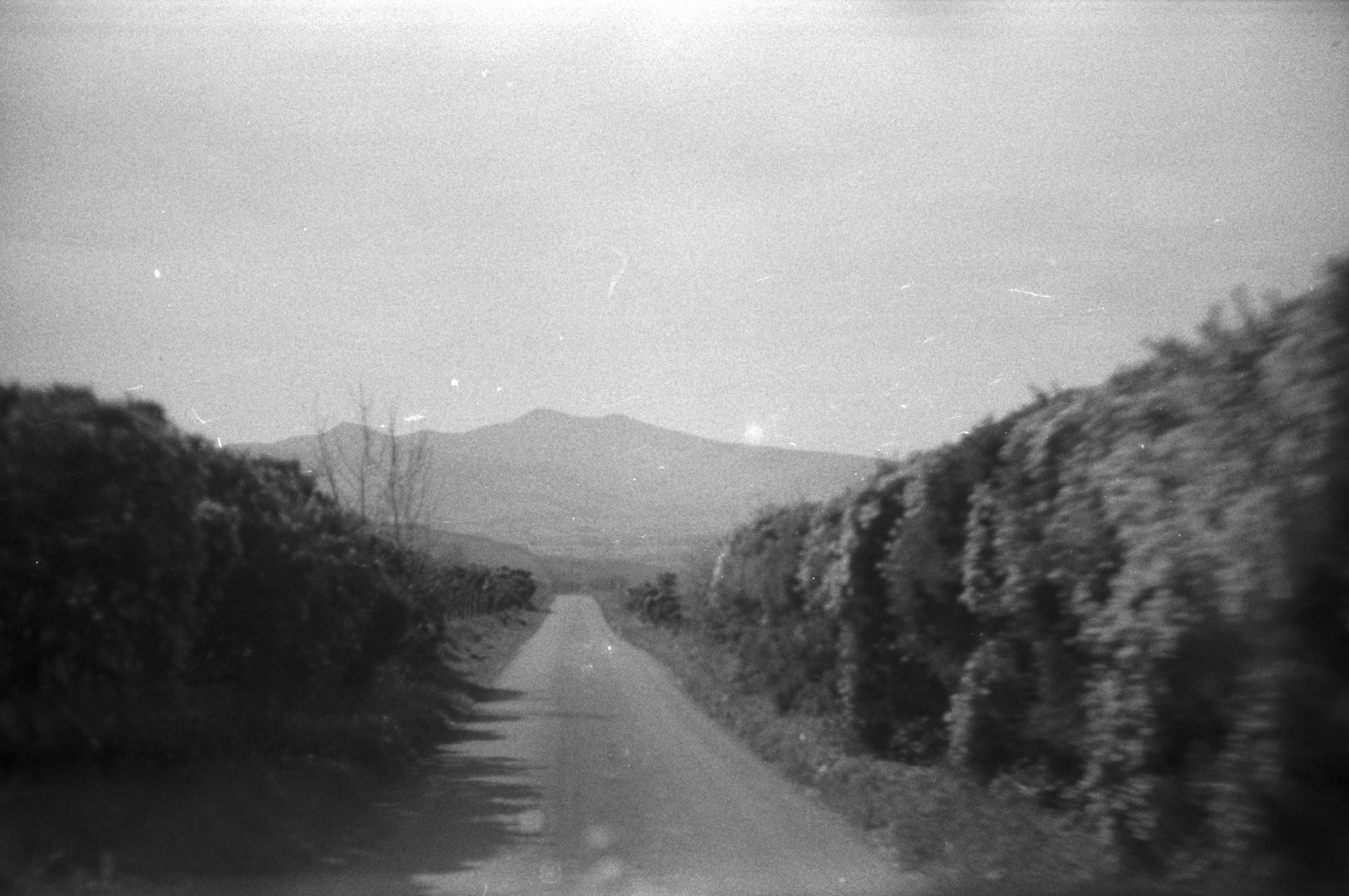 the tailing road to ours.jpg