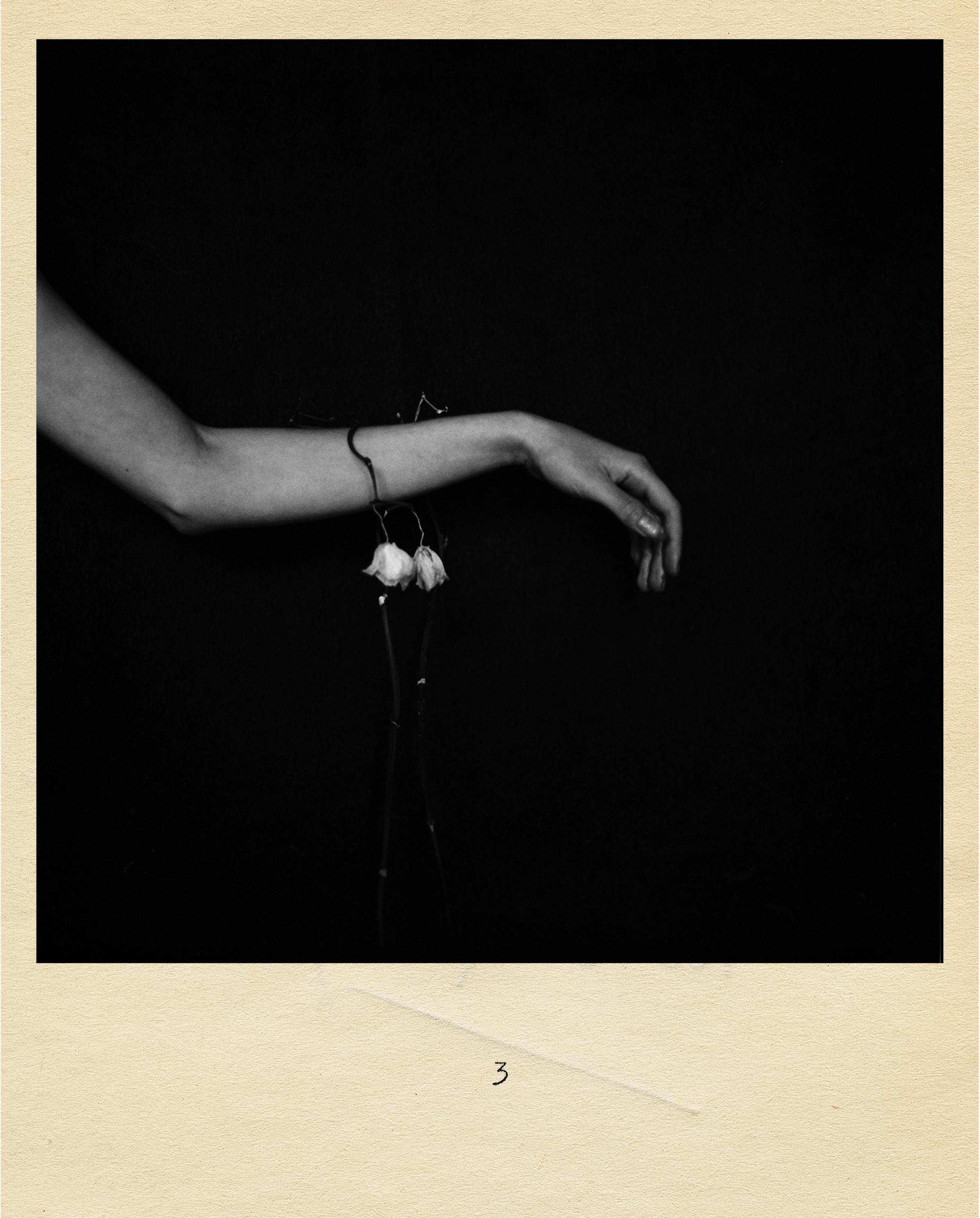 Samana, Samana Music, Samana Photography, Samana Band, Black and white, Rebecca Rose Harris