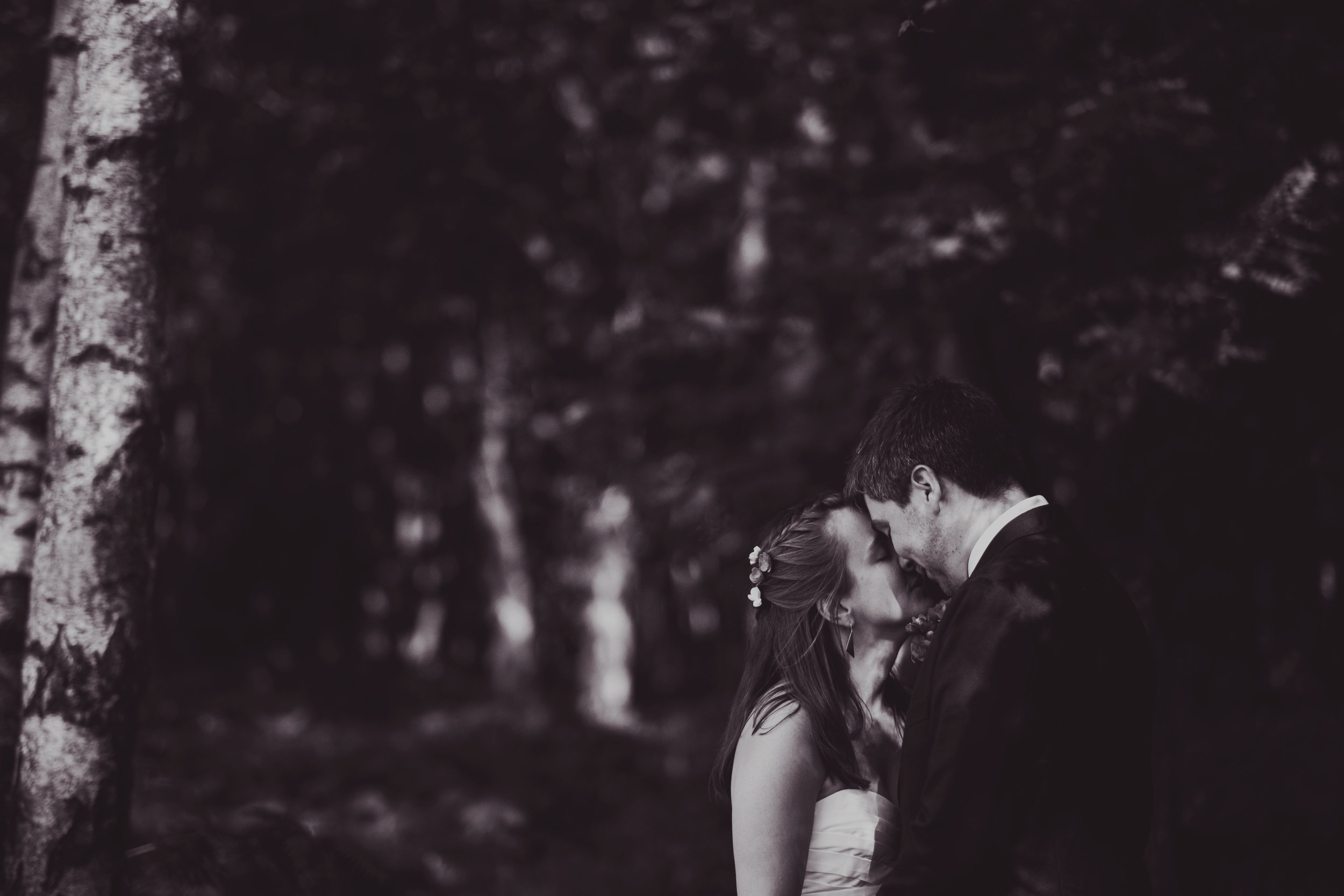 Clare + Ed // The Ivels