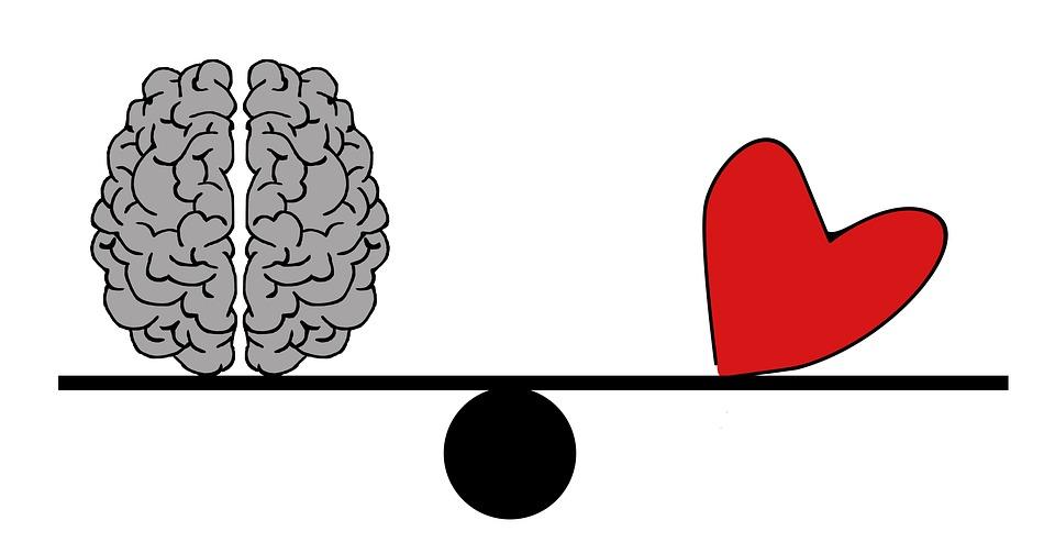 Oft hört man, wir sollen dem Bauchgefühl folgen. Das mag manchmal gut gehen. Wer aber den Verstand trainiert hat, hat klare Vorteile. Denn er kann für die Balance von Geist und Seele spezialisiert werden.