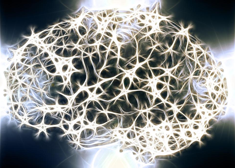 ....    Einfach sensationell, unser Gehirn. Unser ganzes Leben ist darin abgespiegelt. Es ist ein Vorteil, zu wissen, wie es funktioniert, respektive, wie man es positiv beeinflussen kann. Was ist die Bedeutung des  Frontallappens , der Amygdala ? Welcher Lebensstil hat günstigen Einfluss auf die Gehirnzellen usw.     ..    The human brain is absolutely sensational! Each person's entire life is stored within those three crucial pounds of gray matter. So it is beneficial to understand how it works, or better, how it can be influenced for the good. What is the role of the frontal lobe ( BLOG )? The amygdala? How can my lifestyle improve (or damage) brain function? These are important questions, but they seem more important to me, now that I know some answers.   ....