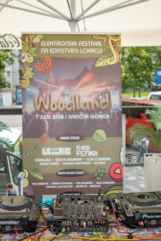 Woodland_warm_UP 2018 - 024.jpg