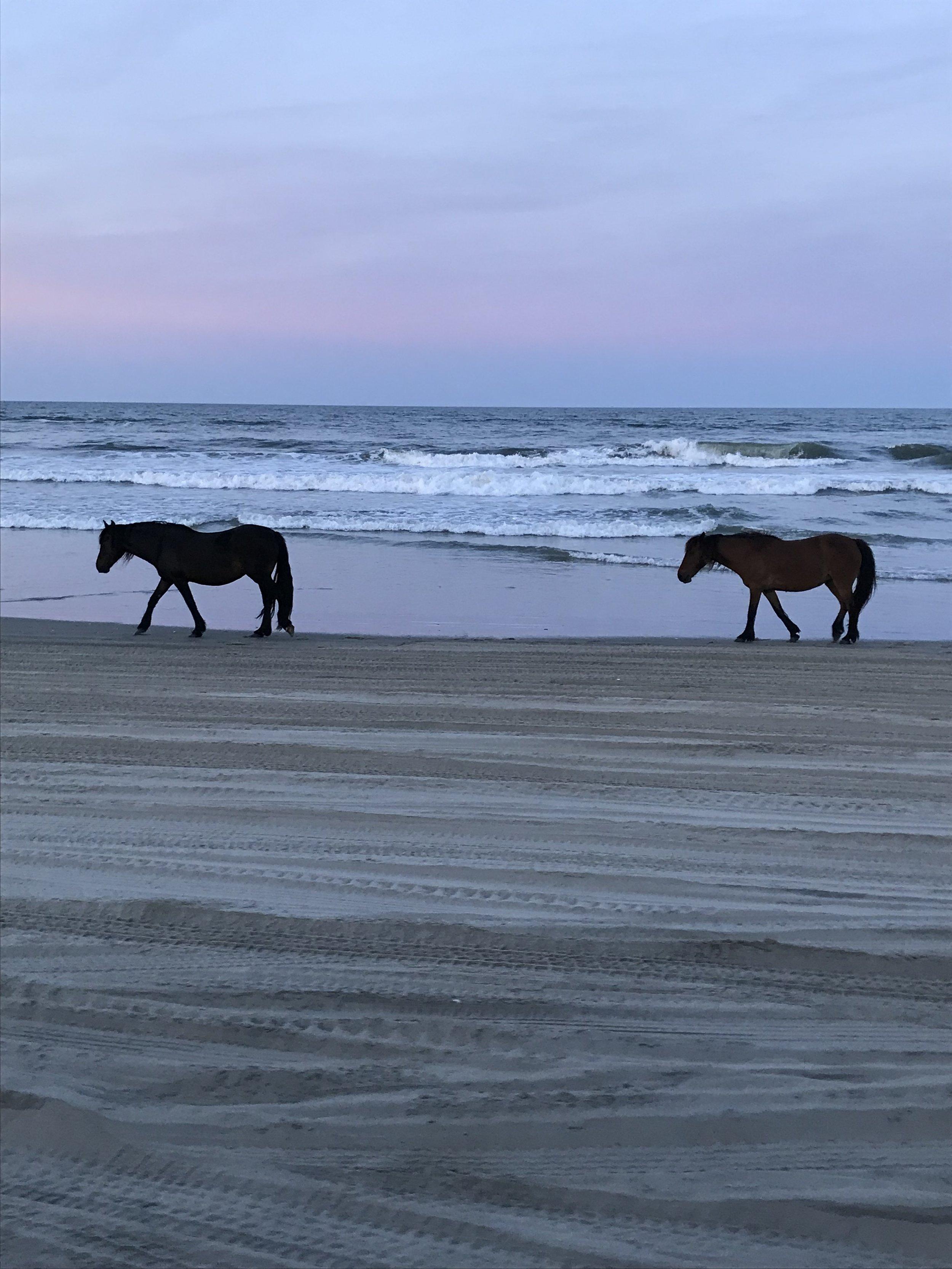 Corolla Beach, OBX