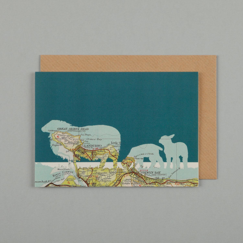 SHEEP, SEA BLUE