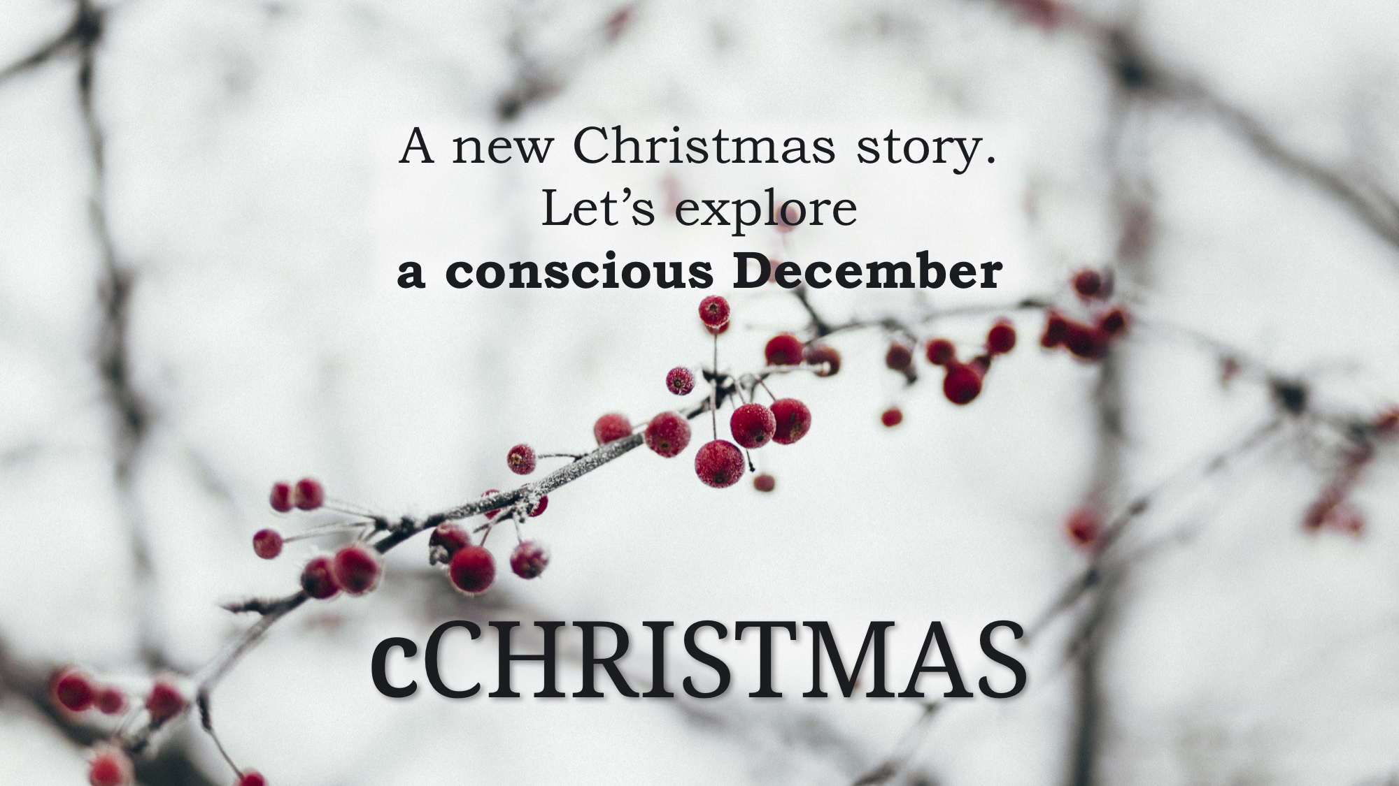 cCHRISTMAS   Follow this public cCHALLENGE round where people from around the world explore a more conscious December.