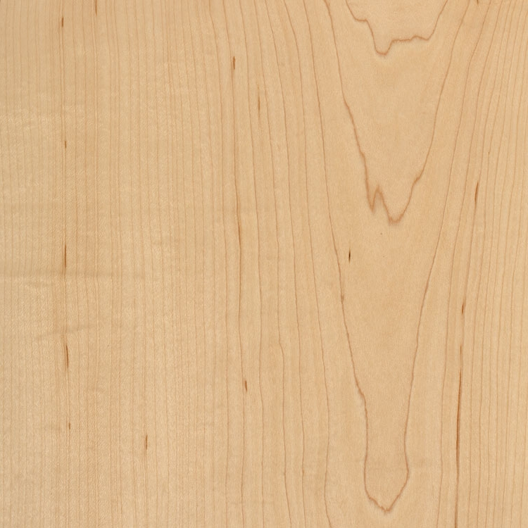 Clear Coat Maple