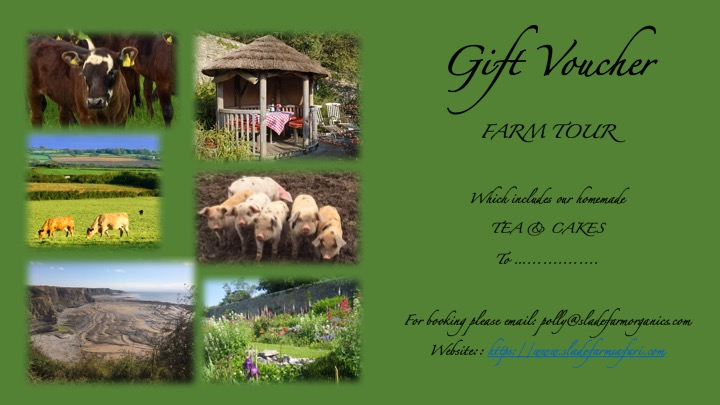 Gift Voucher Template Farm Tours.jpg