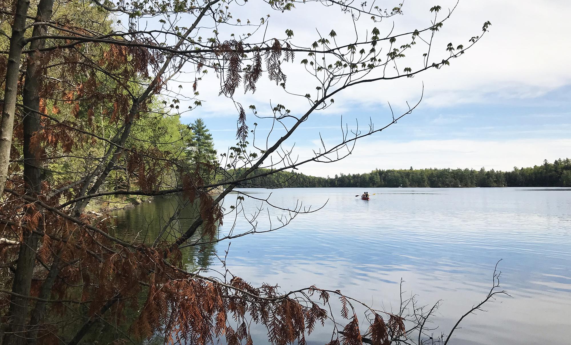 Lake Sharbot - Hike - Provincial Park