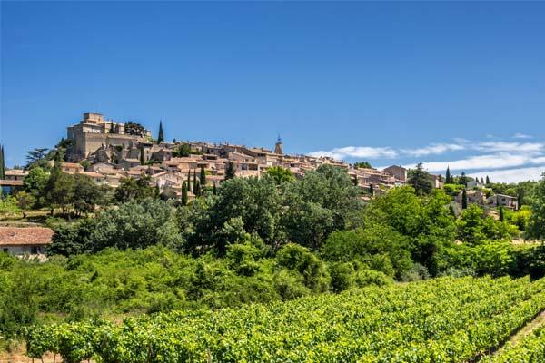 LeBeauvallon-Vineyards2.jpg