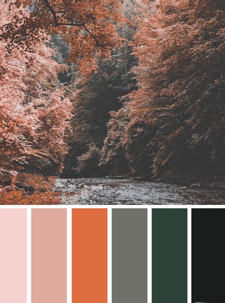 autumn-peach-color-scheme.jpg
