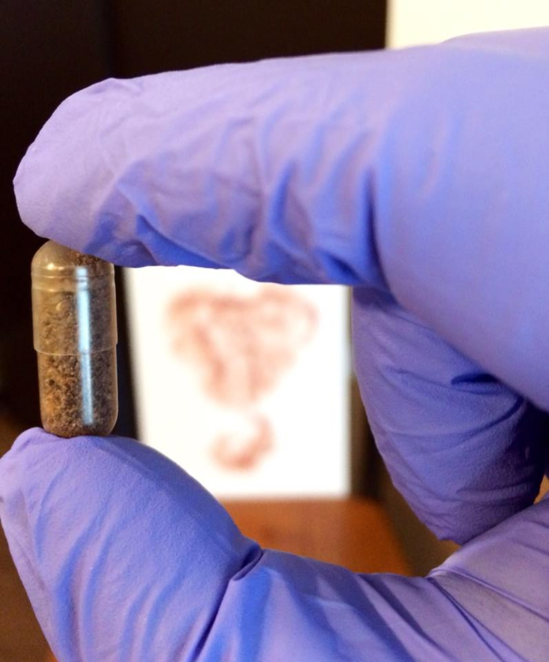 A placenta filled capsule with beautiful print in background.