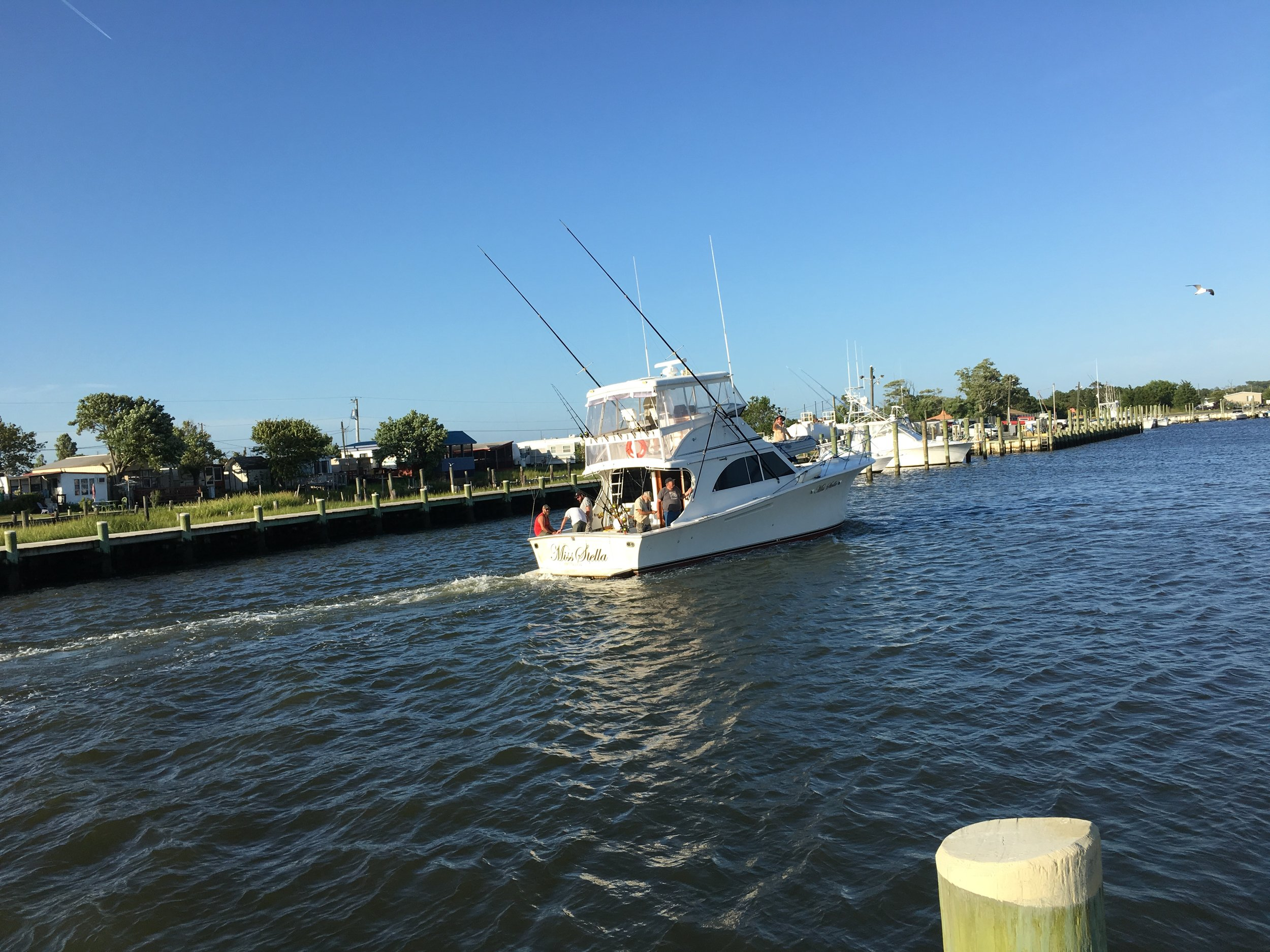 Fish Boat 1.jpg