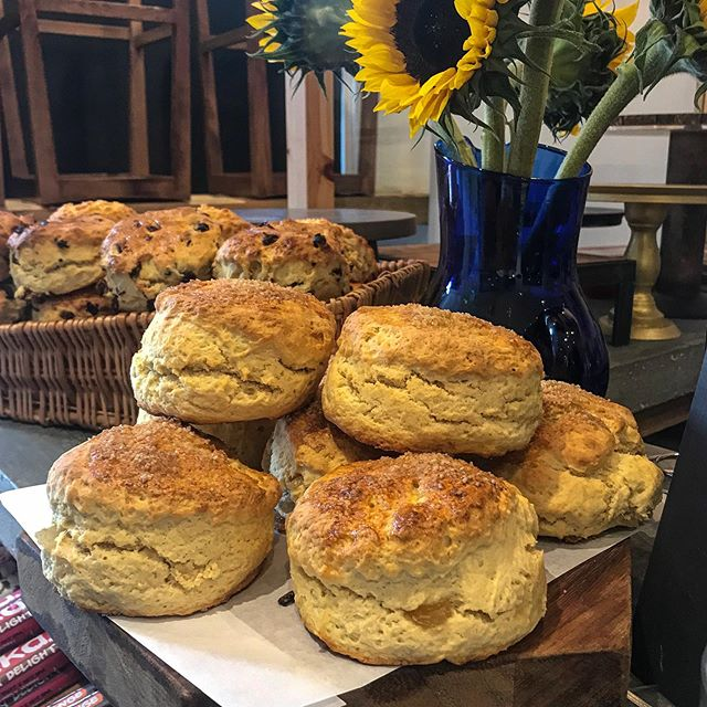 Special Scones today are Ginger and Vanilla. They smell so good! Hope you get to try them 😉.