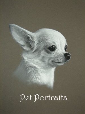 Pet_Portrait_Sample_by_Daniel_Lovely.jpg