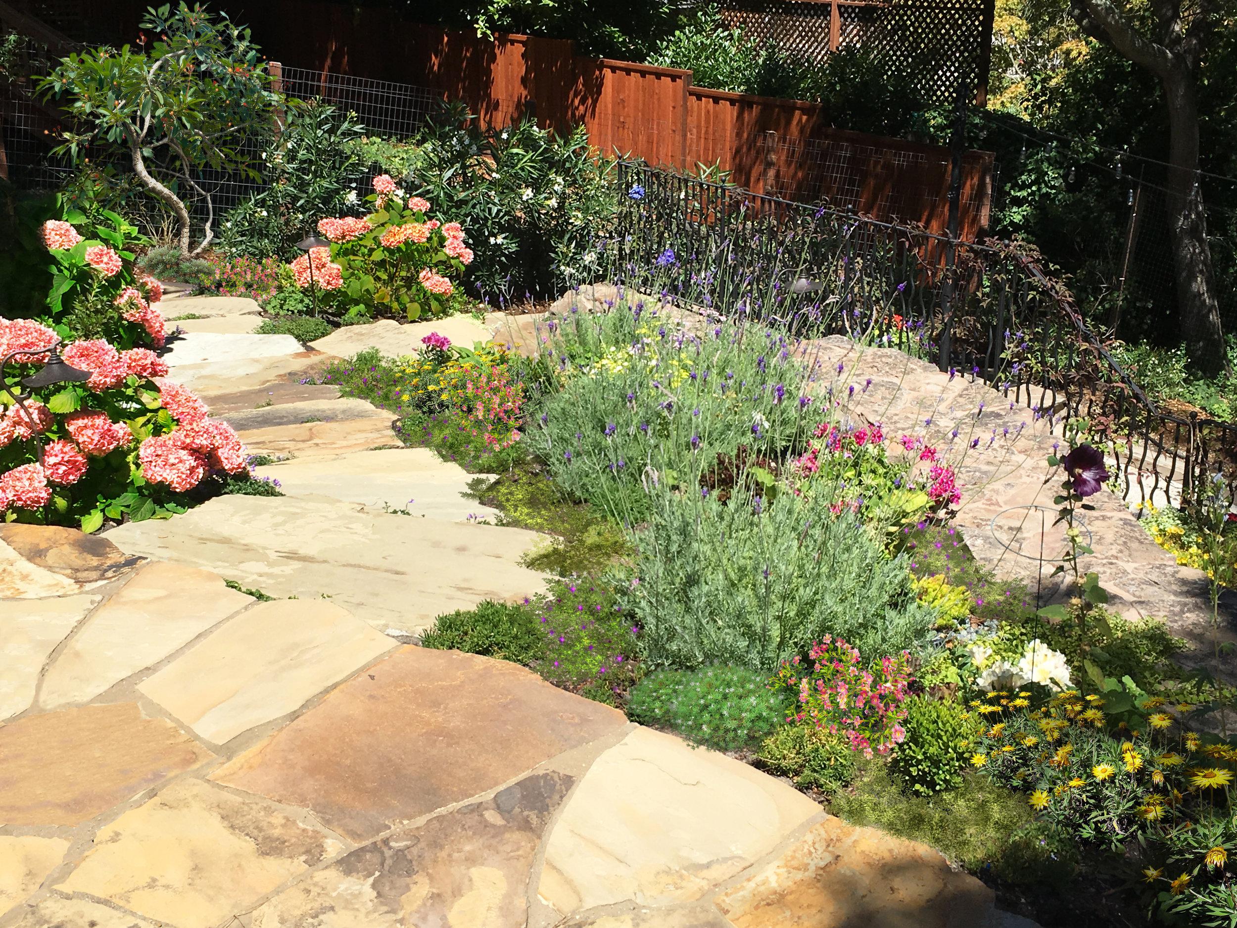 Orinda Hills Cottage Garden