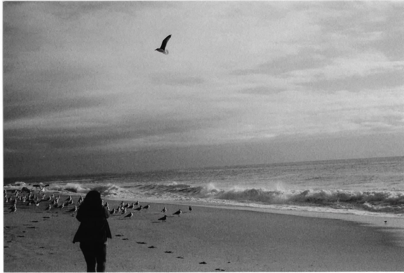 film, photo by Vanessa Serna