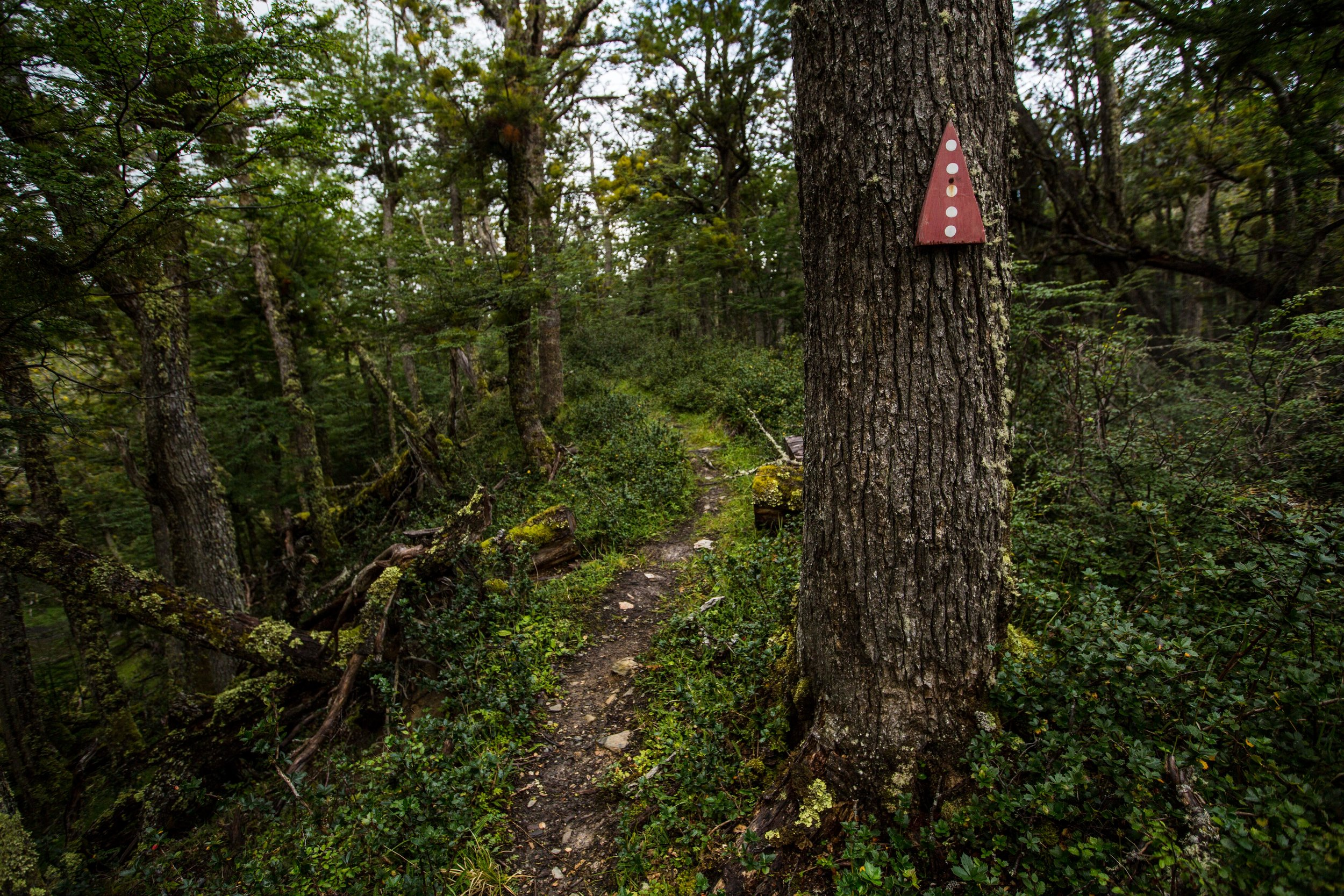 Paciencia trail - One of the trail markers of the Paciencia trail. It uses the colors and symbols of the Selk'nam people who lived in the area. The name Karukinka is of Selk'nam origin as well, meaning
