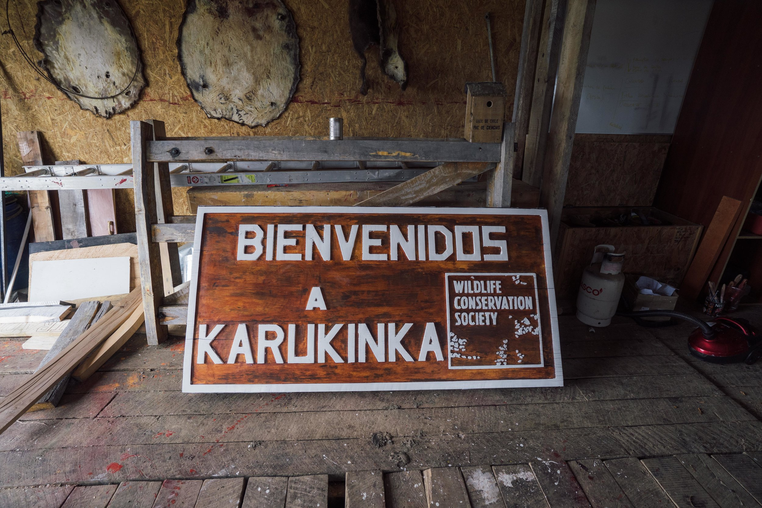 The new sign made by volunteers at the Vicuña HQ