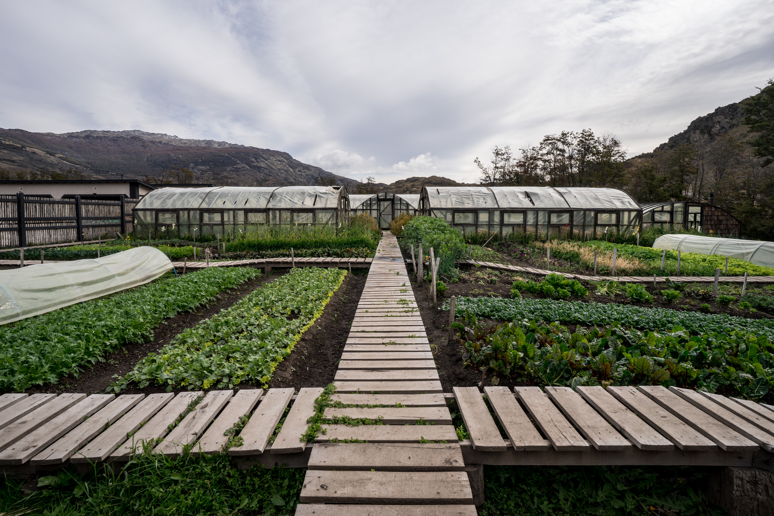 - In Valle Chacabuco the vegetable garden, or