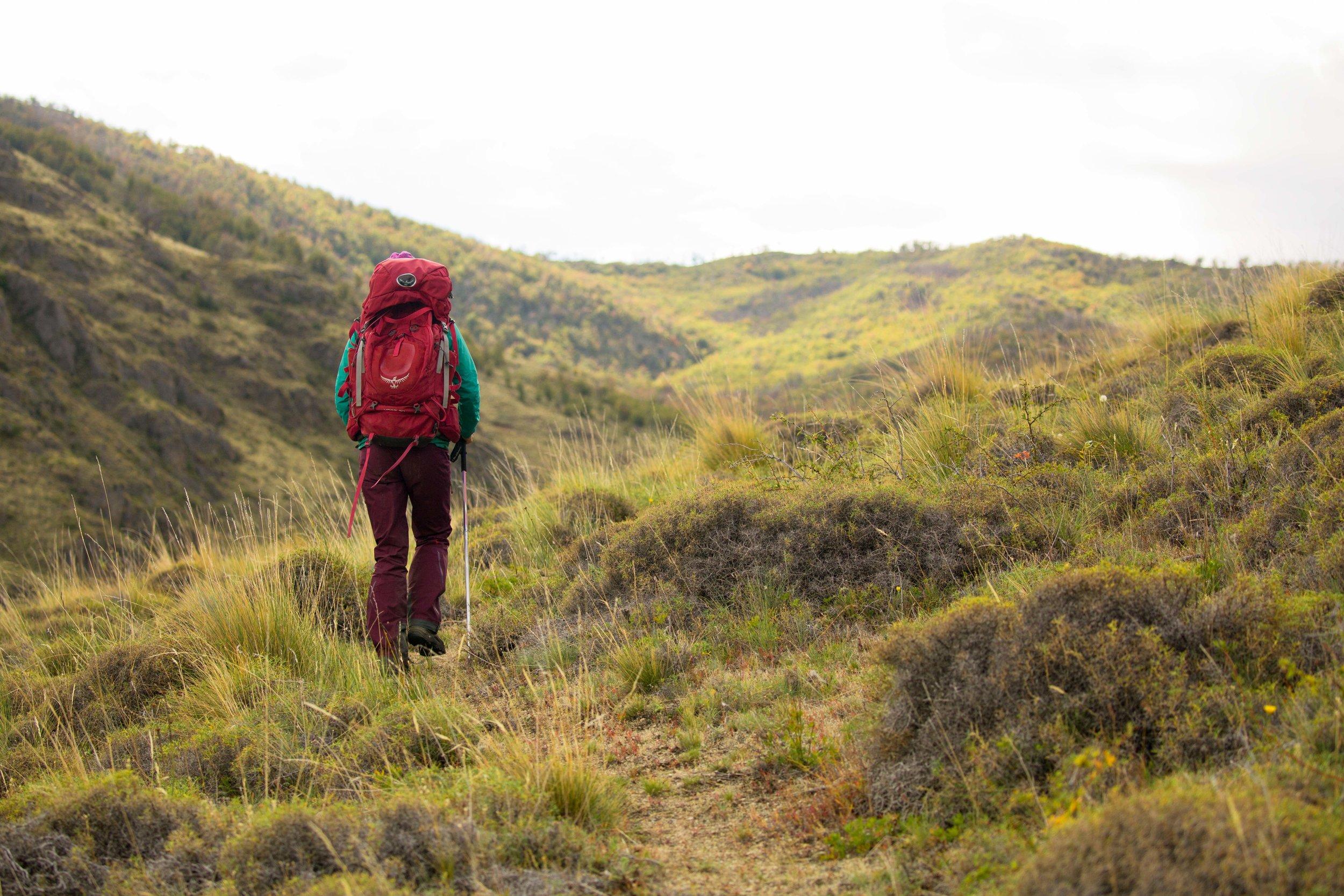 Hiking THE Los Gatos TRAIL -