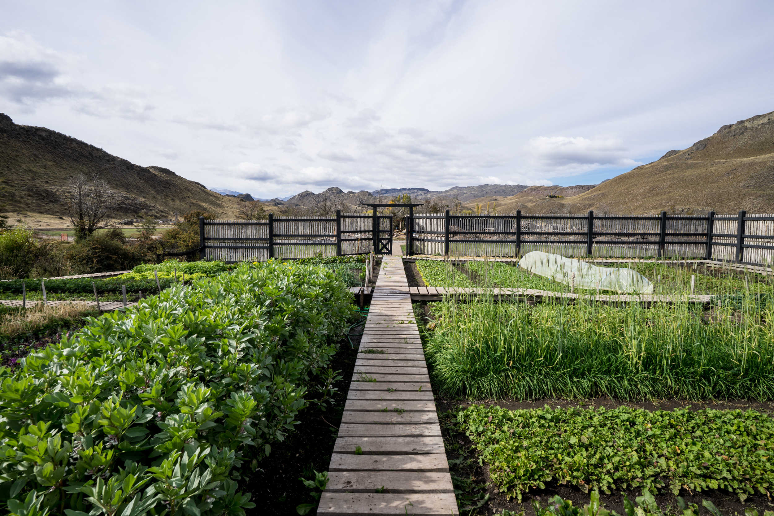 vegetable garden of the patagonia park - Planted on 600 sq metres/6,450 sq ft, this garden renders over three tons of produce per season.