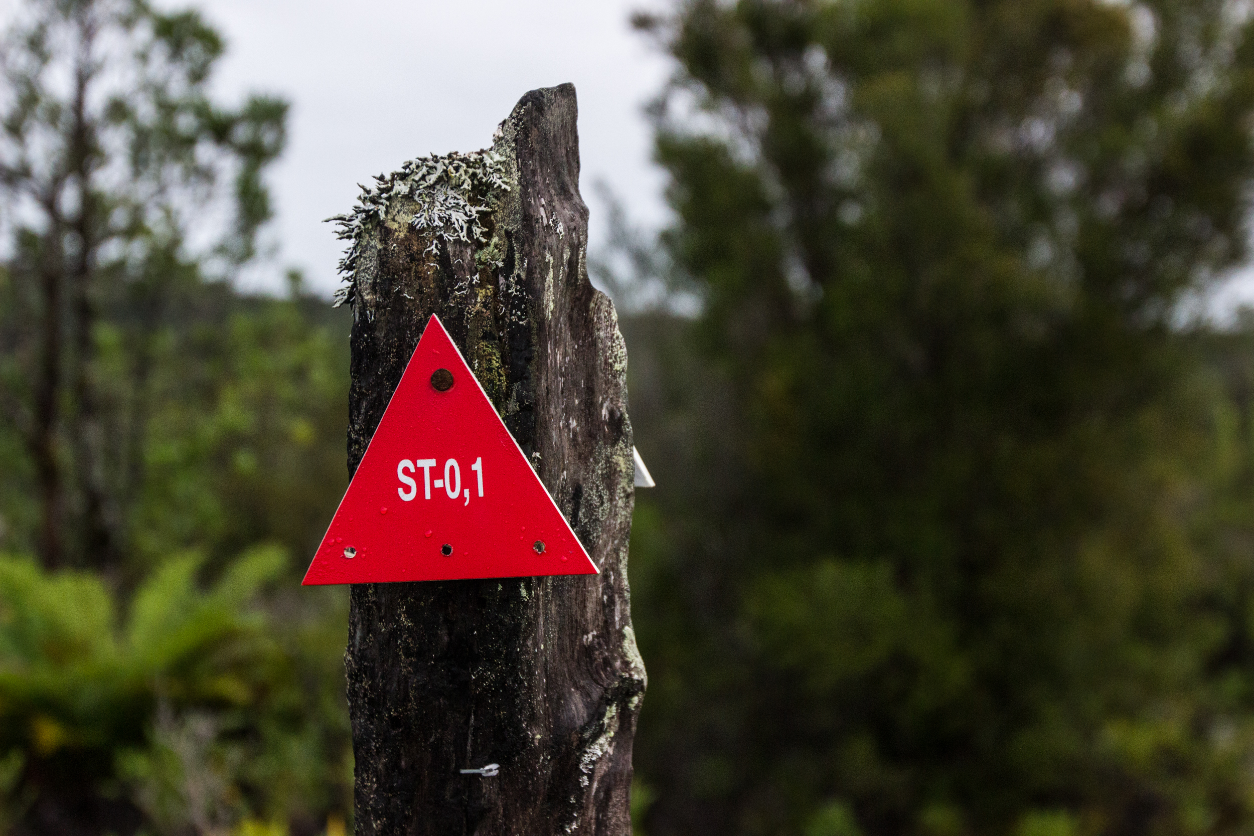 First trail marker on the Transversal Trail/Sendero Transversal (ST)