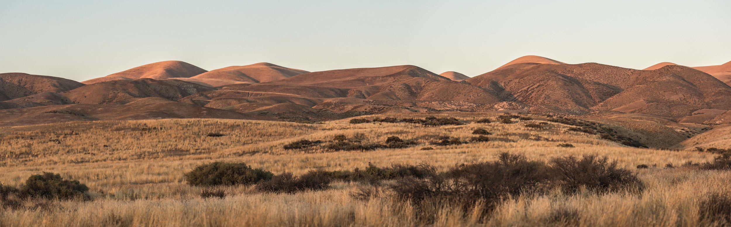 caliente range - The Caliente Range, which runs along the southwestern side of the national monument. When the conditions are just right during spring these mountains explode with colorful wildflowers in an event known as a