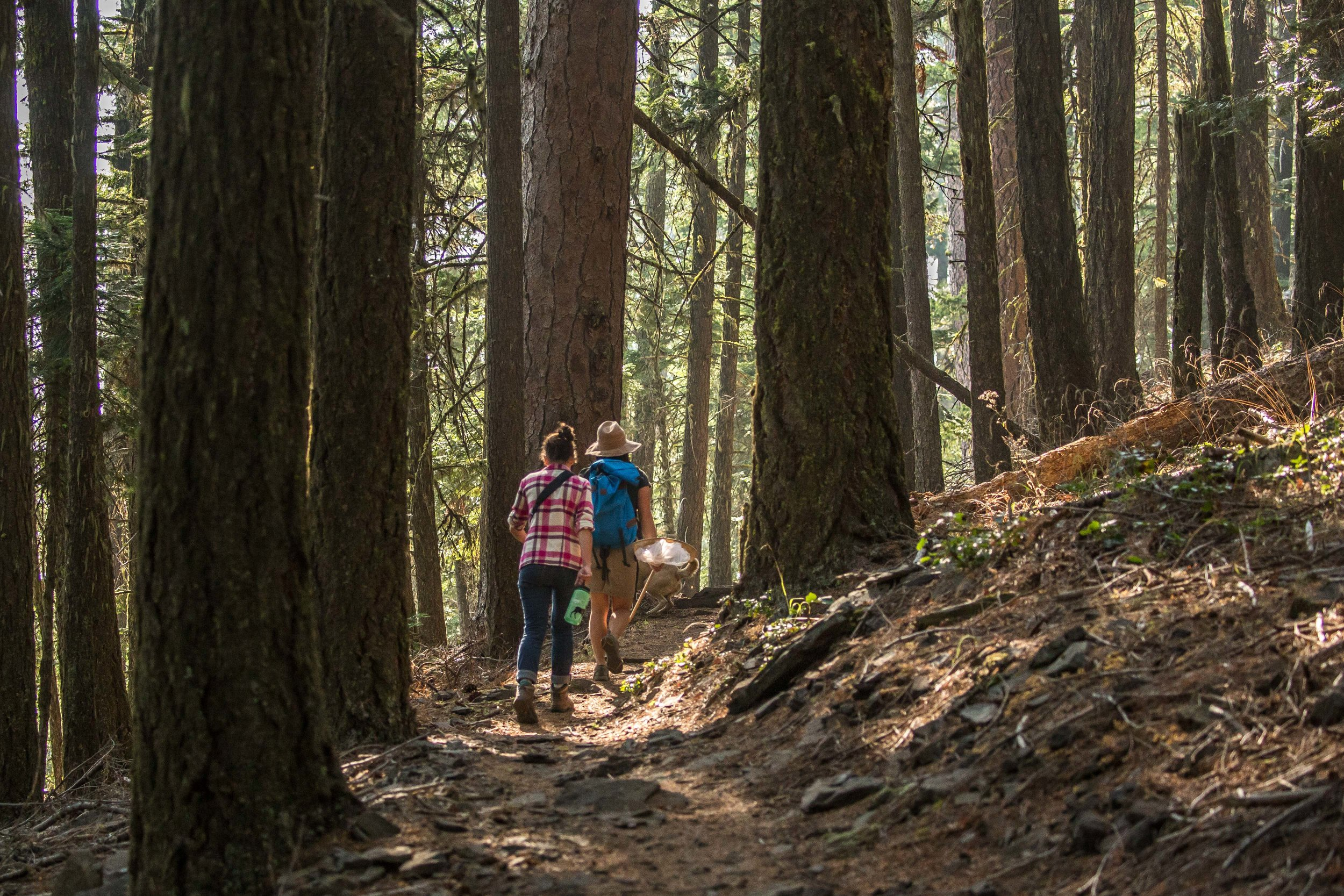 - Hiking along a section of the PCT with Jeanine Moy from KS Wild
